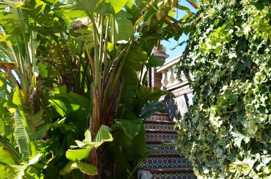 Xxx redimae escalier piscine
